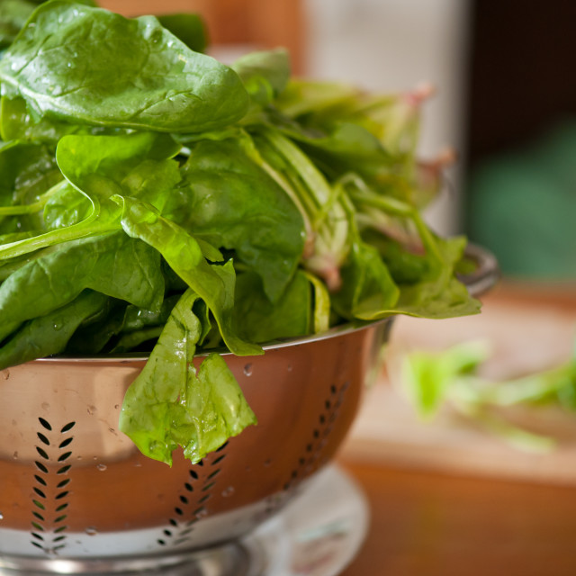 """""""Spinach leaves in strainer"""" stock image"""