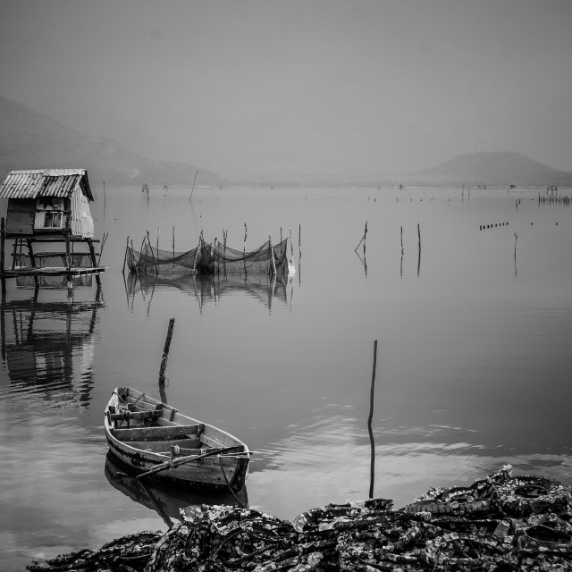 """""""Lap An swamp, Hue, Vietnam"""" stock image"""