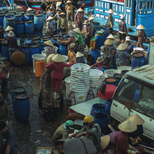 """Fish Market in Viet Nam"" stock image"