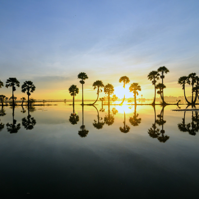 """Sunrise at Mekong Delta, Vietnam"" stock image"