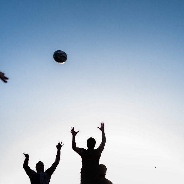 """Rugby Line-out"" stock image"
