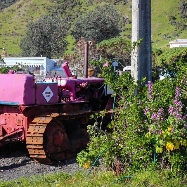 """Purple bulldozer"" stock image"