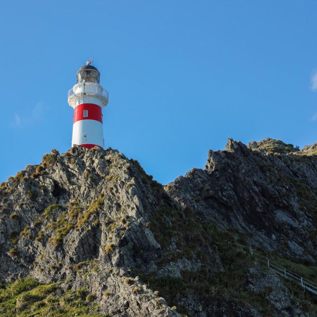 """Cape Palliser lighthouse 2."" stock image"