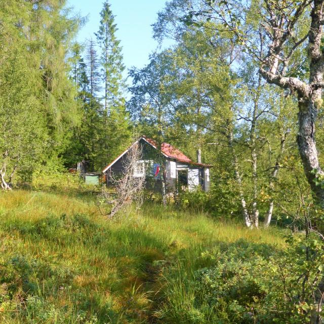 """""""Norwegian Cabin"""" stock image"""