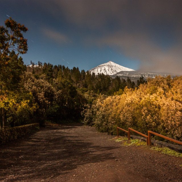 """""""Teide mountain"""" stock image"""