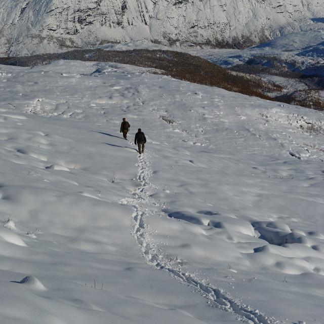 """""""Two elk hunters in snowy terrain"""" stock image"""