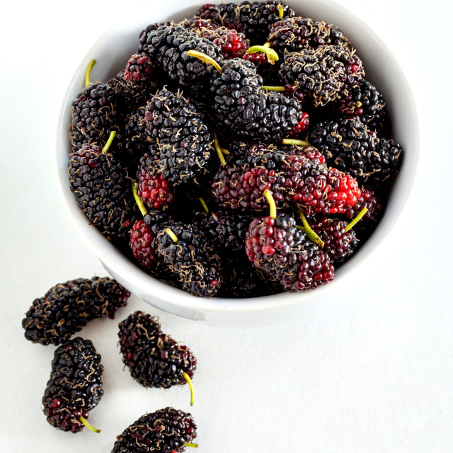 """Fresh organic mulberry in bowl islate on white background."" stock image"