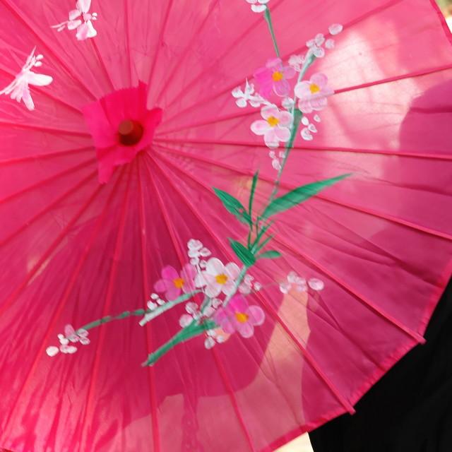 """Pink Umbrella"" stock image"