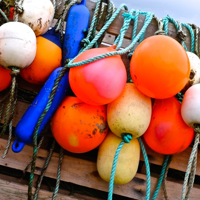 """Buoys hanging out"" stock image"