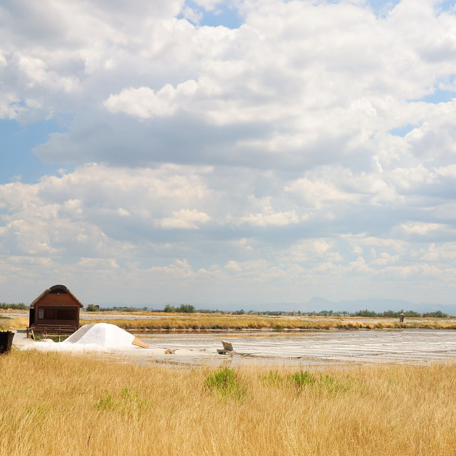 """""""Salt of Cervia,Italy"""" stock image"""