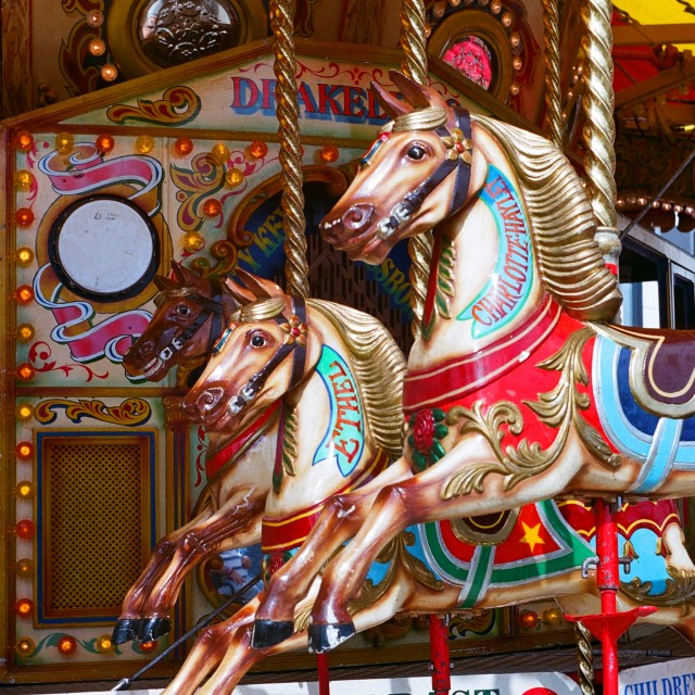 """""""The Gallopers (Portrait)"""" stock image"""