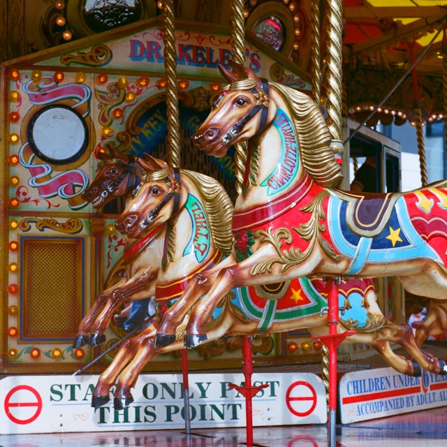 """""""The Gallopers (Square)"""" stock image"""