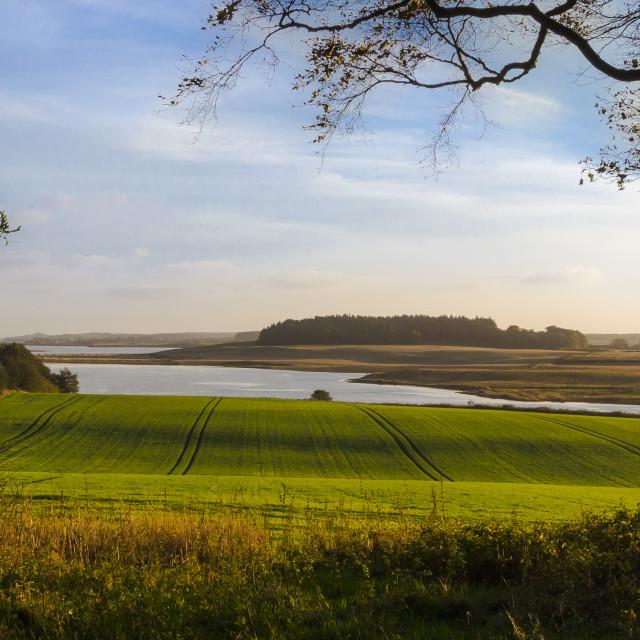 """Landscape eastern Scotland"" stock image"