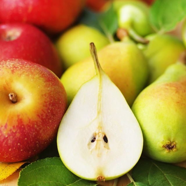 """apples and pears, red and green, whole and cut"" stock image"