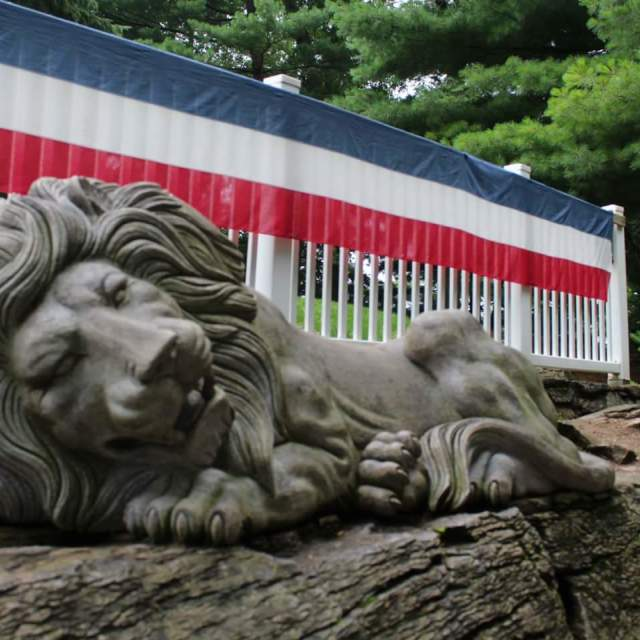"""patriotic lion"" stock image"
