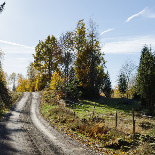 """Countryside gravel road"" stock image"