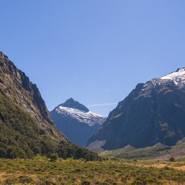 """""""Snowy mountains in summer"""" stock image"""