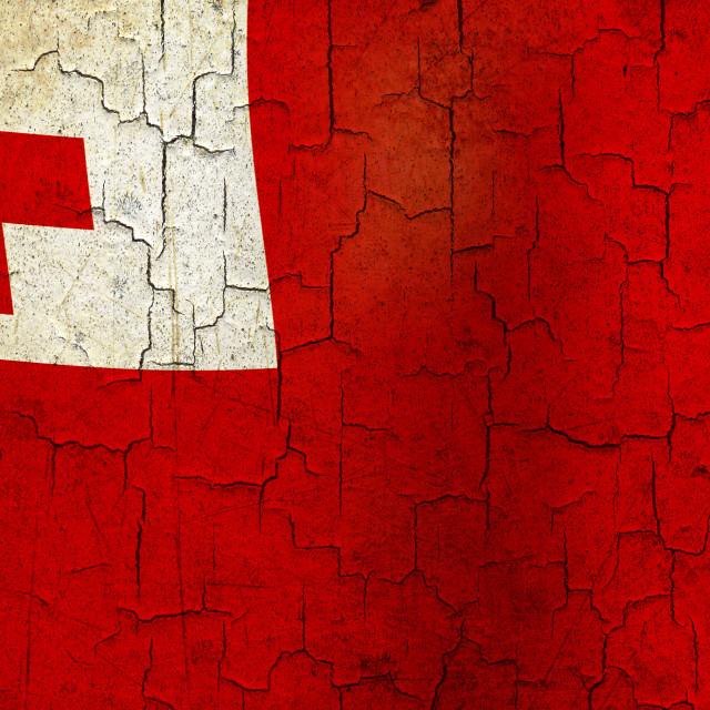 """""""Grunge Tonga flag"""" stock image"""