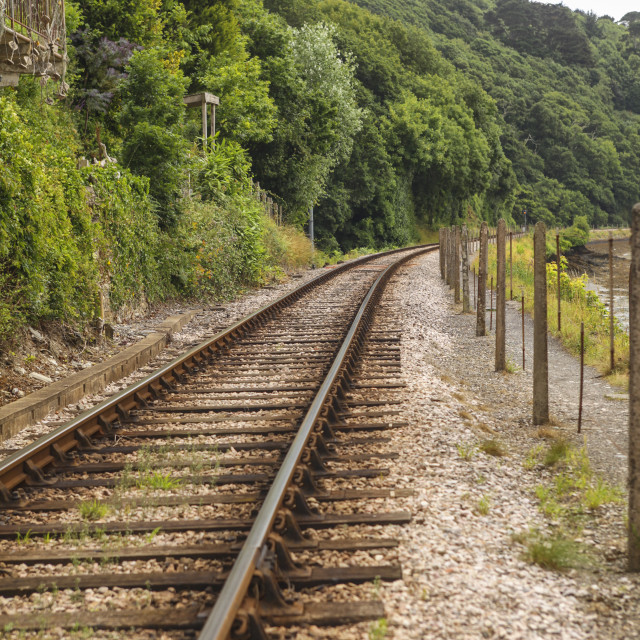 """Single railway track"" stock image"