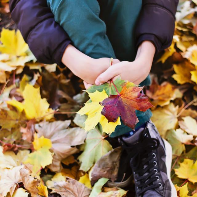 """""""Lovely autumn"""" stock image"""