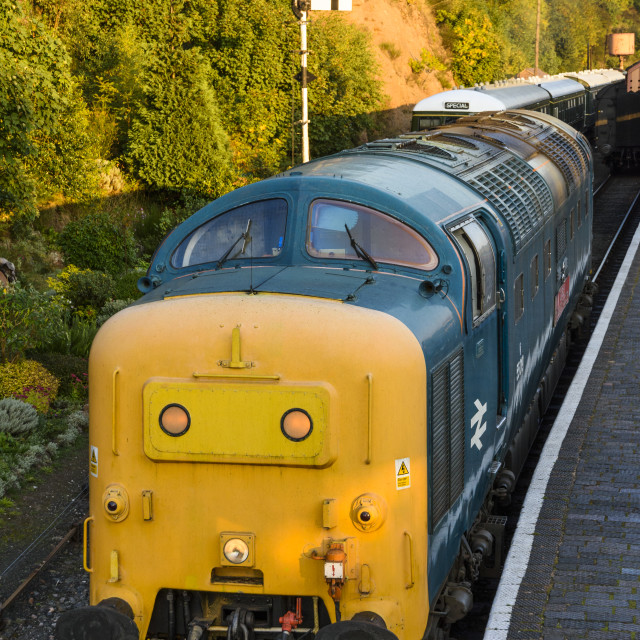 """""""Class 55 Deltic 55019 Royal Highland Fusilier"""" stock image"""
