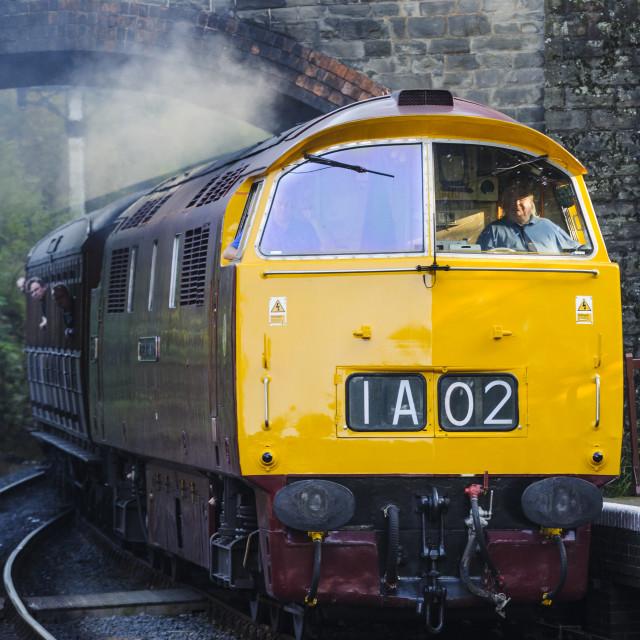 """Class 52 western diesel loco D1015"" stock image"