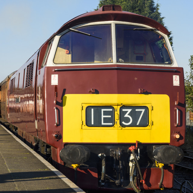 """""""Class 52 loco D1062 Western Courier"""" stock image"""