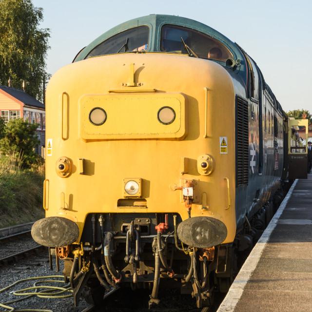 """Class 55 Deltic 55019"" stock image"