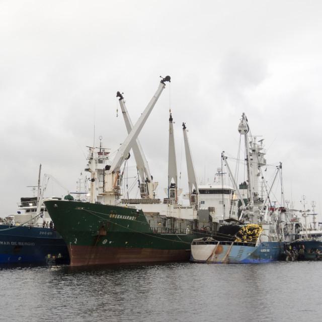 """Transhipment of tuna"" stock image"