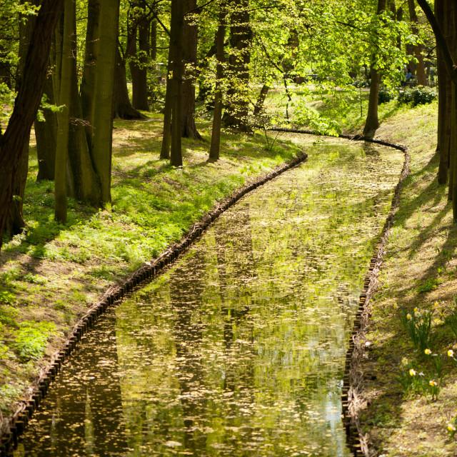 """Vibrant green spring pond"" stock image"