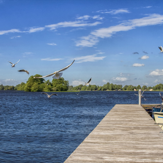 """""""Wooden jetty , boats and seagulls"""" stock image"""