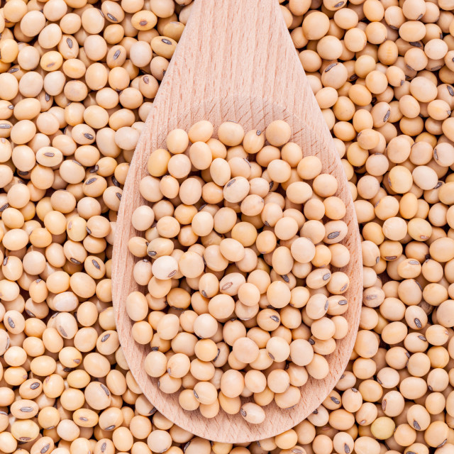 """Close Up soy beans in wooden spoon and soy beans background."" stock image"
