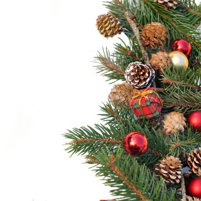 """Christmas tree"" stock image"