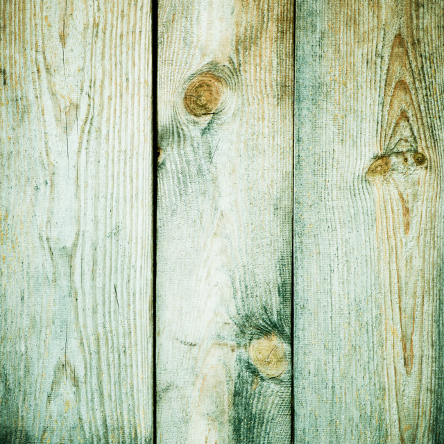 """""""Green grunge boards texture abstract"""" stock image"""