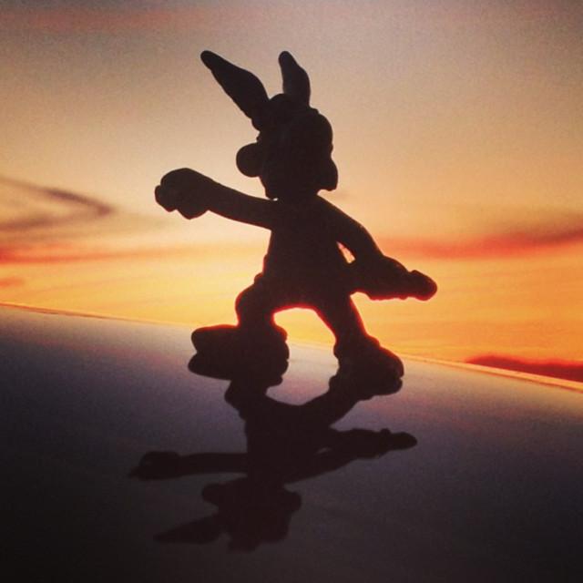"""Sunset Asterix"" stock image"