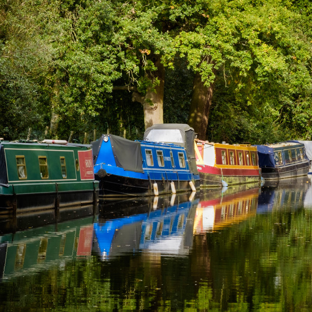 """Reflections on the Wey"" stock image"
