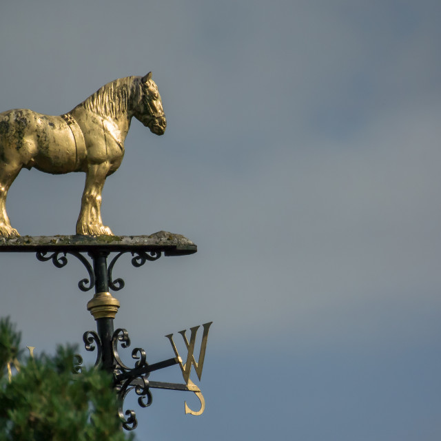 """Cart Horse Weather Vane"" stock image"