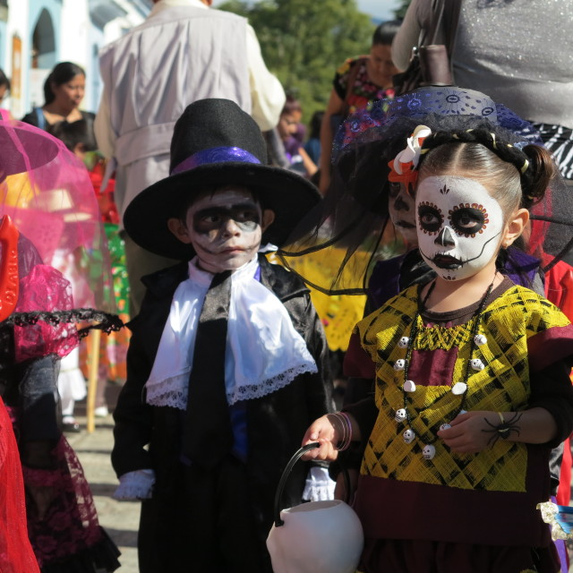 """Day of the Dead Celebration"" stock image"