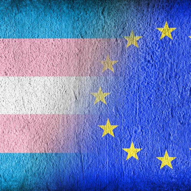 """""""Trans Pride and the EU"""" stock image"""