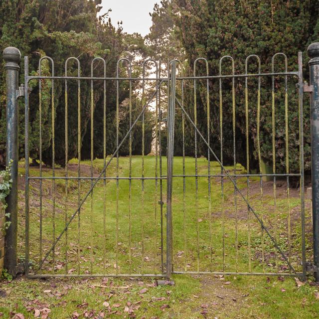 """Cemetery Gates"" stock image"