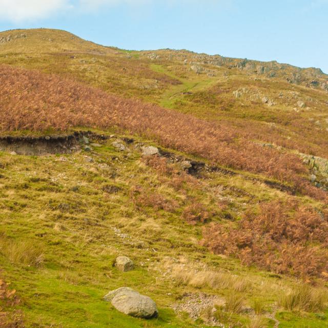 """""""Cumbrian Hills"""" stock image"""