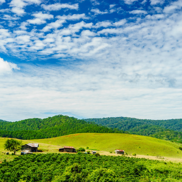 """""""The houses in valley"""" stock image"""