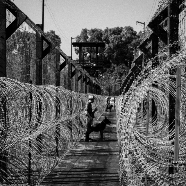 """Prison fence"" stock image"