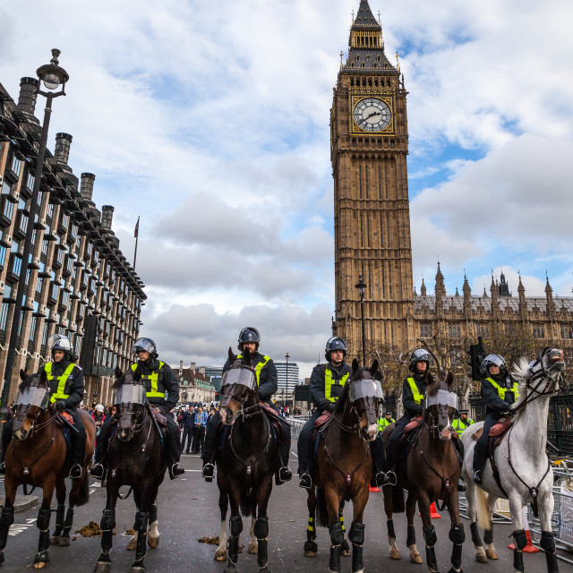 """Guarding Parliament"" stock image"
