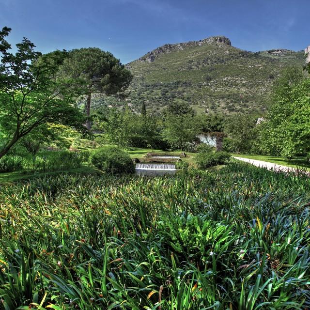 """""""Giardino di Ninfa"""" stock image"""
