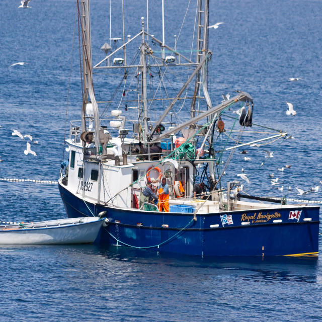"""Trawler Boat fishing"" stock image"