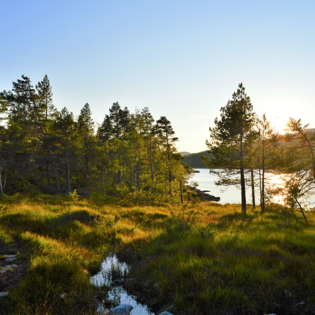 """Norwegian Countryside."" stock image"