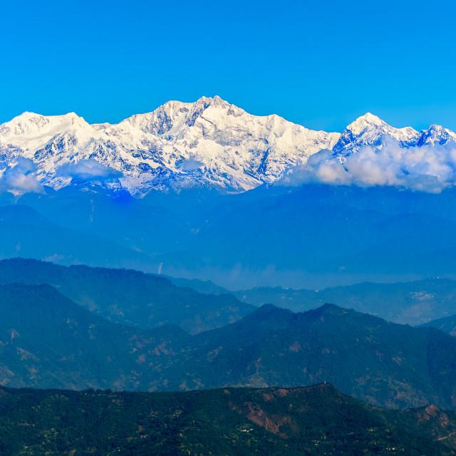 """Snowcapped mountain peaks of Himalayas, Kanchenjunga, teagarden"" stock image"