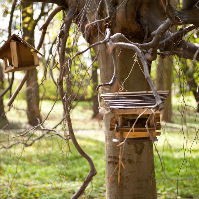 """""""Empty bird feeders in park"""" stock image"""