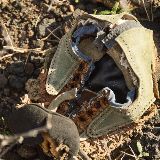 """""""Broken shoe, dumped in nature"""" stock image"""